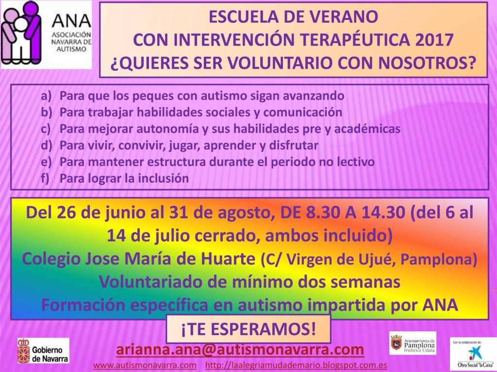 VOLUNTARIOS ESCUELA DE VERANO