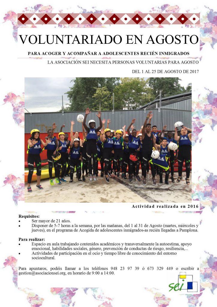 Cartel Voluntariado Agosto 2017